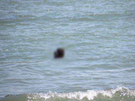 کشف حجاب در سواحل عمومی شمال ! + عکس